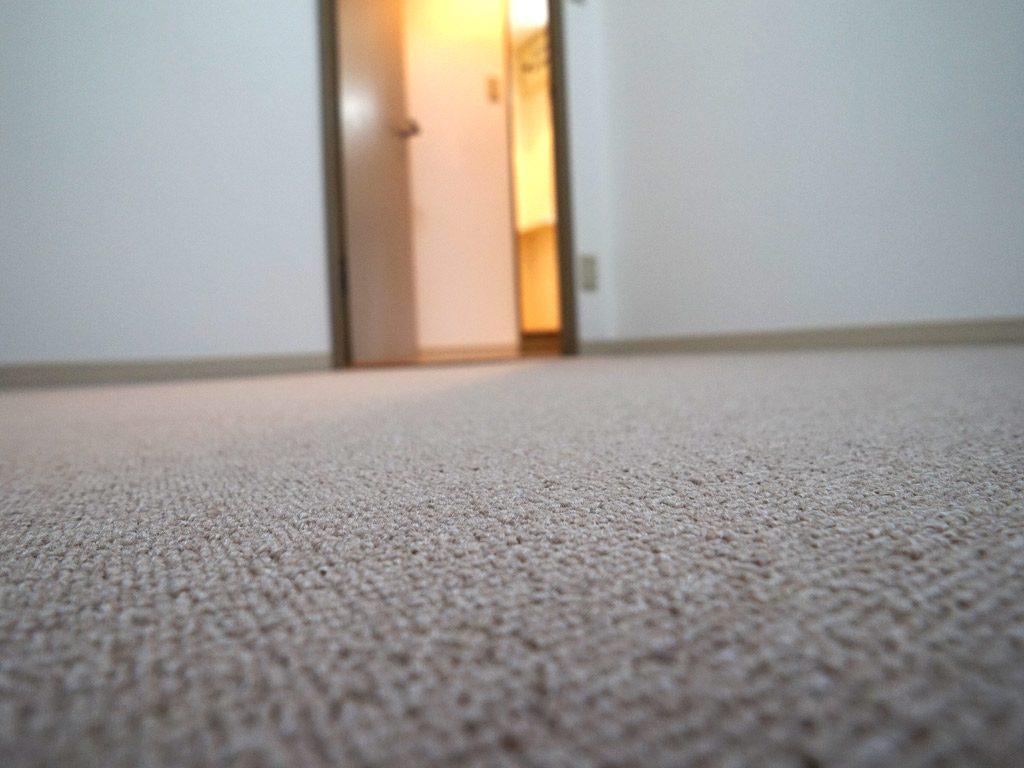 質の良い分譲賃貸マンションで快適な暮らし 絨毯の質にこだわりました