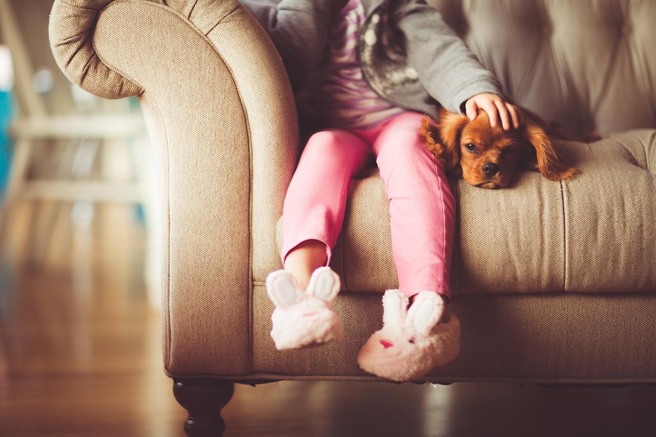 犬がフローリングで滑るのを防ぐためのリフォームとお部屋作りの方法