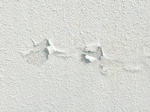 一定期間を過ぎると劣化が始まるため、「塗装」が必要になります